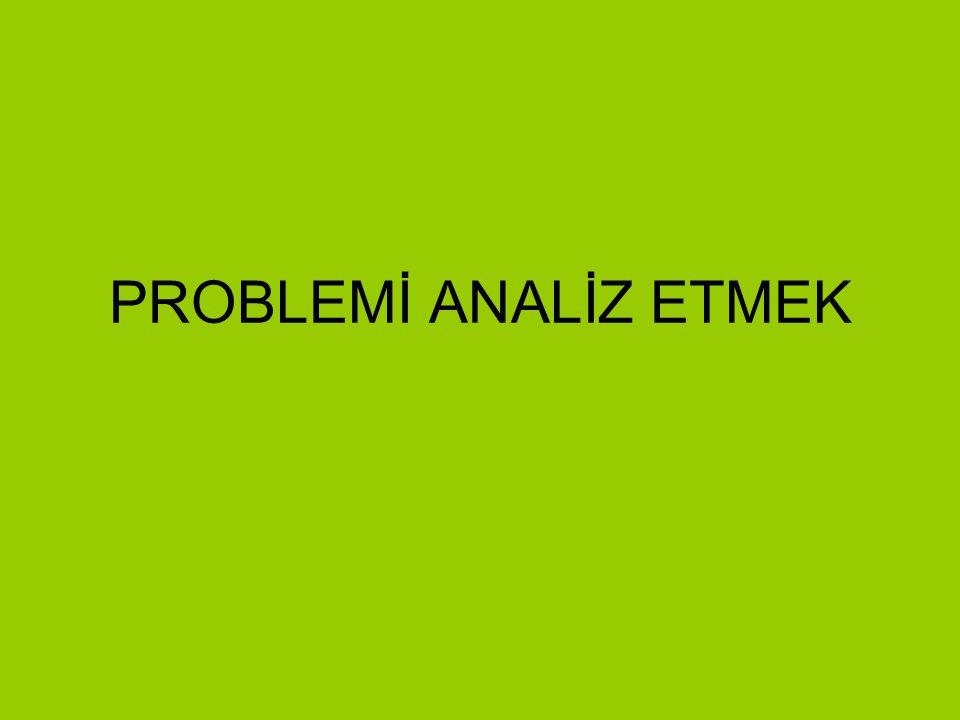 PROBLEMİ ANALİZ ETMEK