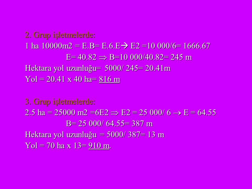 2. Grup işletmelerde: 1 ha 10000m2 = E.B= E.6.E E2 =10 000/6= 1666.67. E= 40.82  B=10 000/40.82= 245 m.