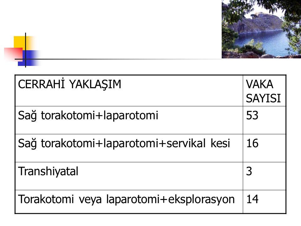 CERRAHİ YAKLAŞIM VAKA SAYISI. Sağ torakotomi+laparotomi. 53. Sağ torakotomi+laparotomi+servikal kesi.