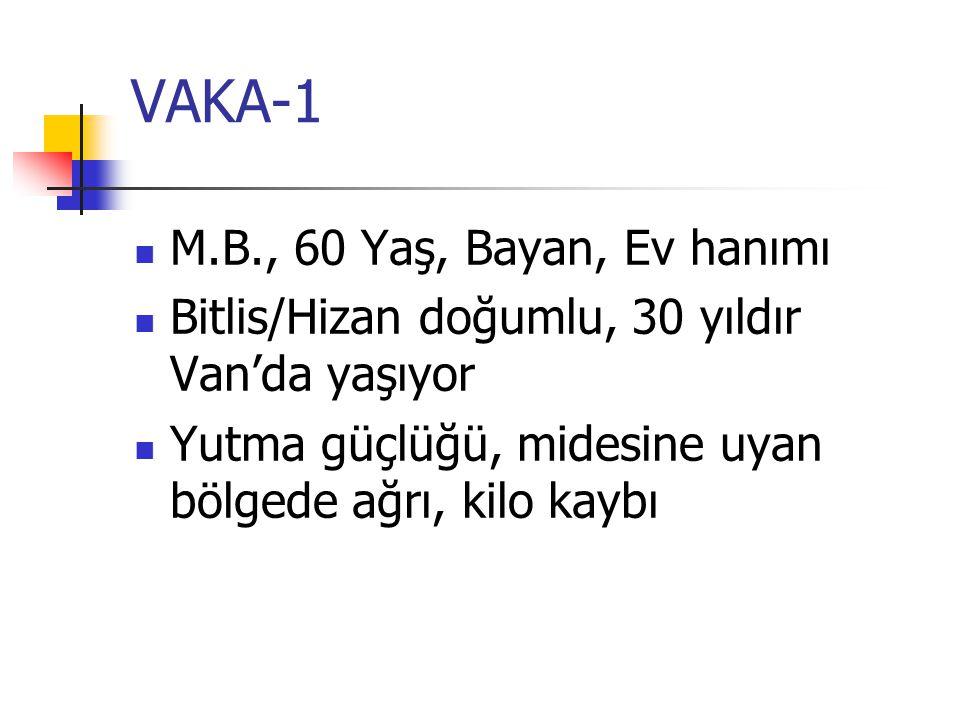 VAKA-1 M.B., 60 Yaş, Bayan, Ev hanımı