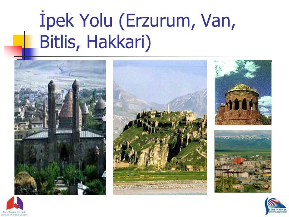 İpek Yolu (Erzurum, Van, Bitlis, Hakkari)