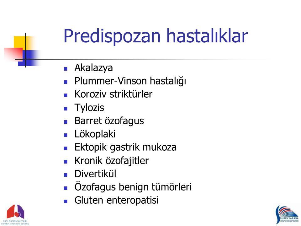 Predispozan hastalıklar