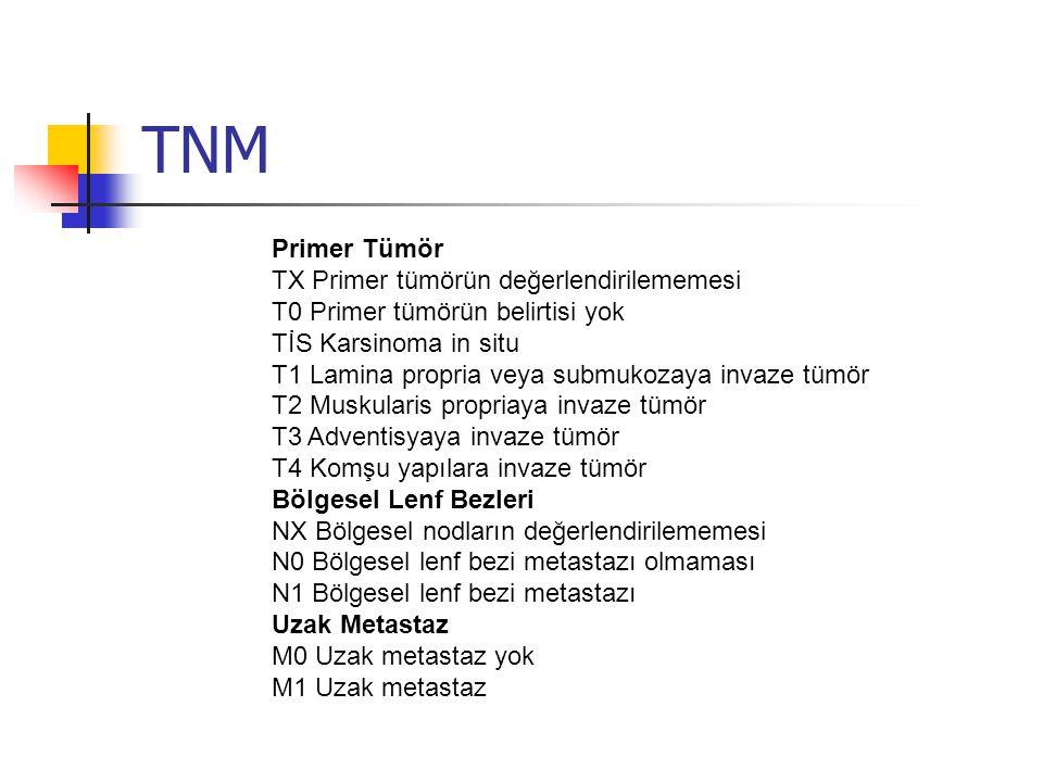 TNM Primer Tümör TX Primer tümörün değerlendirilememesi
