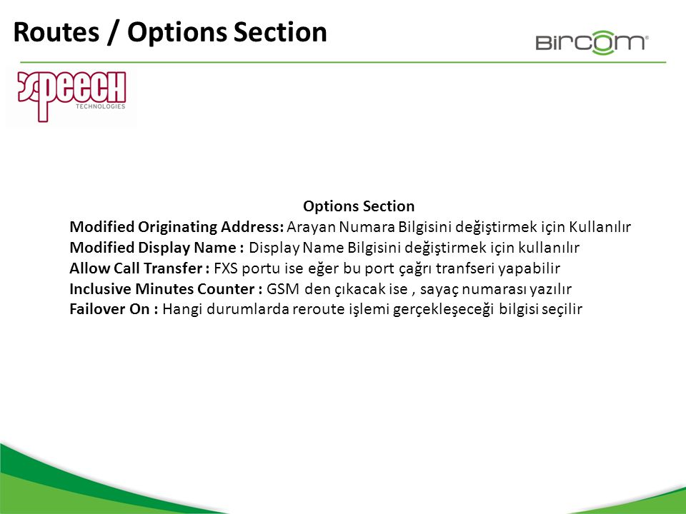 Routes / Options Section