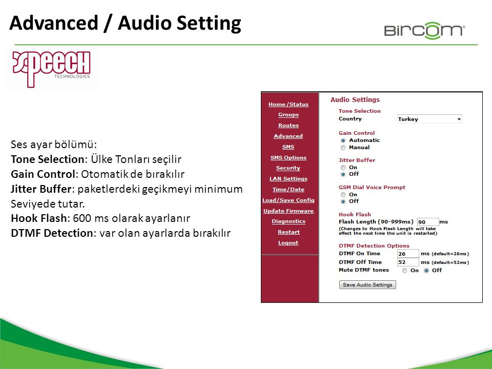 Advanced / Audio Setting