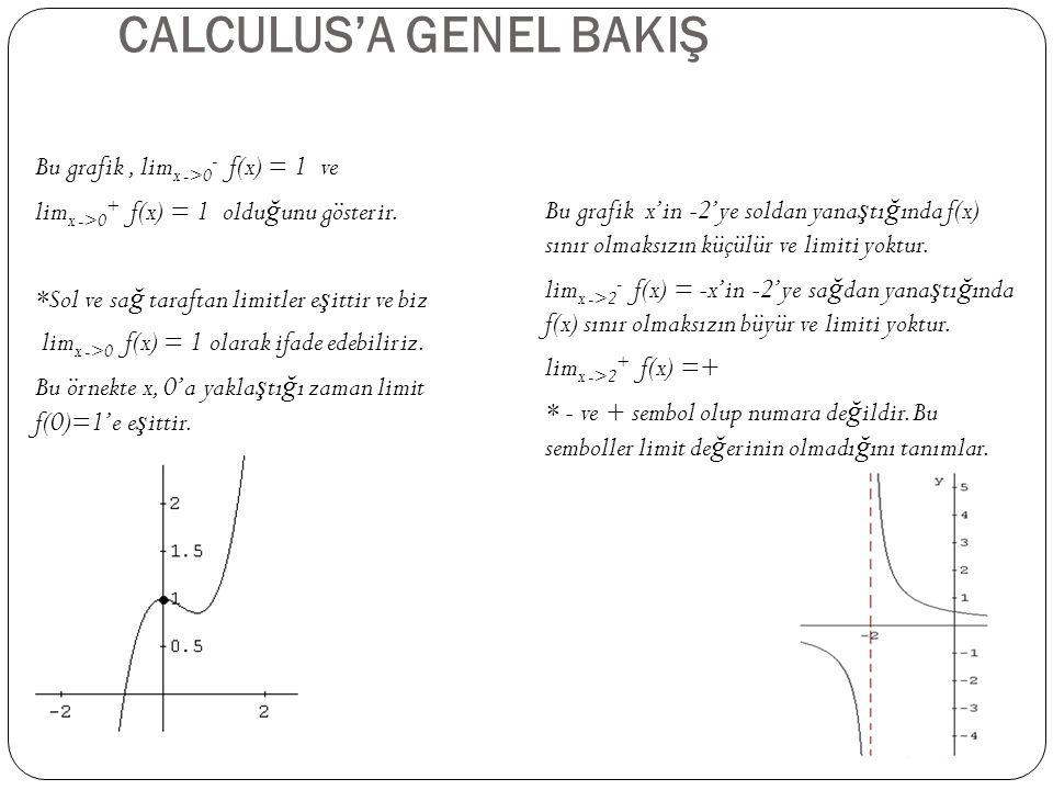 CALCULUS'A GENEL BAKIŞ