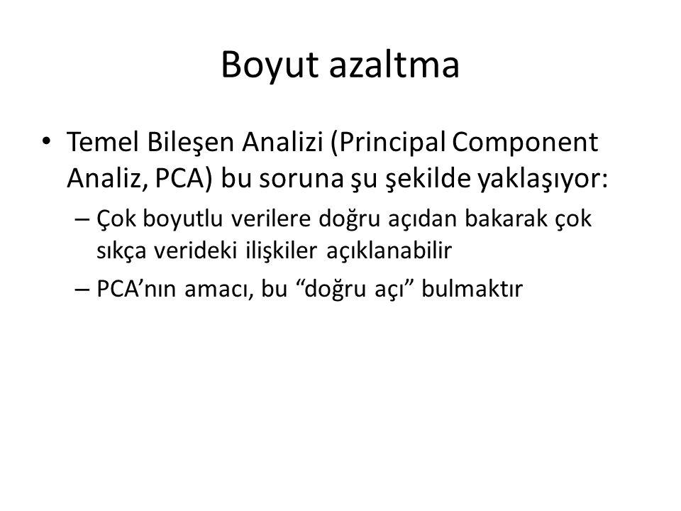 Boyut azaltma Temel Bileşen Analizi (Principal Component Analiz, PCA) bu soruna şu şekilde yaklaşıyor: