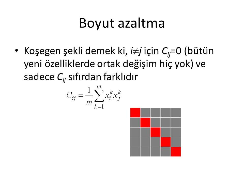Boyut azaltma Koşegen şekli demek ki, ij için Cij=0 (bütün yeni özelliklerde ortak değişim hiç yok) ve sadece Cii sıfırdan farklıdır.