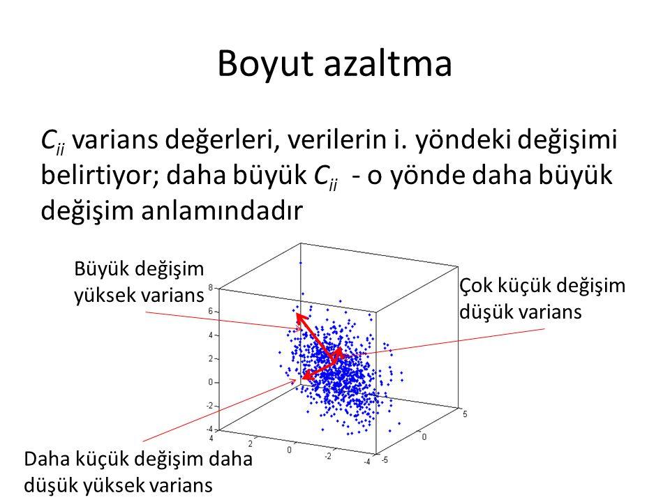 Boyut azaltma Cii varians değerleri, verilerin i. yöndeki değişimi belirtiyor; daha büyük Cii - o yönde daha büyük değişim anlamındadır.
