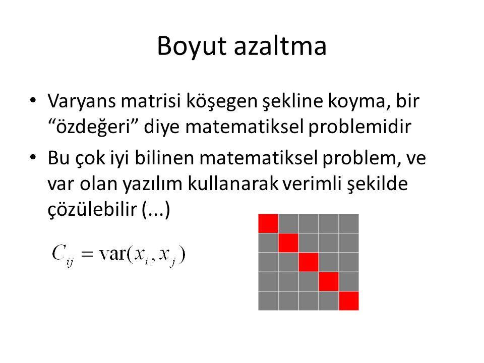 Boyut azaltma Varyans matrisi köşegen şekline koyma, bir özdeğeri diye matematiksel problemidir.