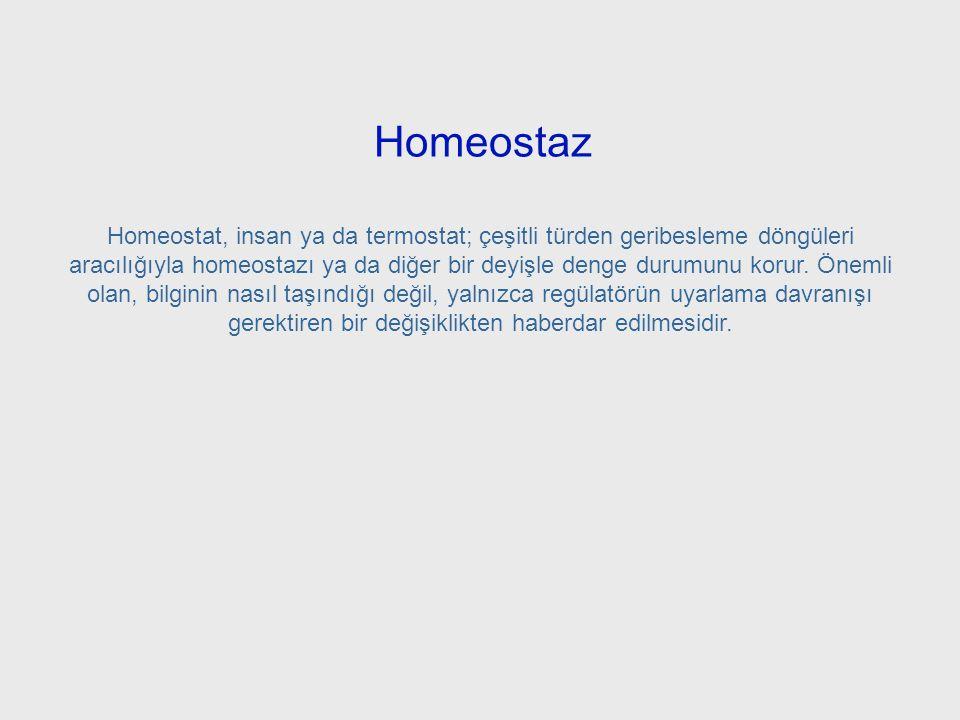 Homeostaz