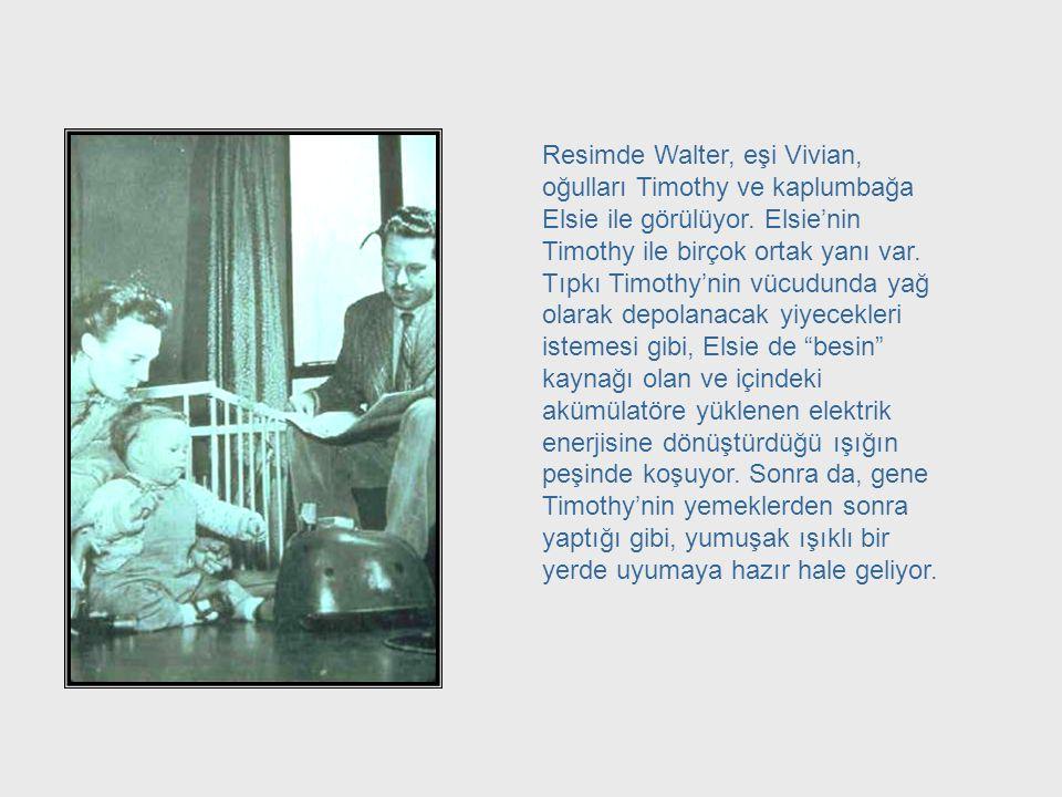 Grey Walter and Family Resimde Walter, eşi Vivian, oğulları Timothy ve kaplumbağa Elsie ile görülüyor. Elsie'nin Timothy ile birçok ortak yanı var.