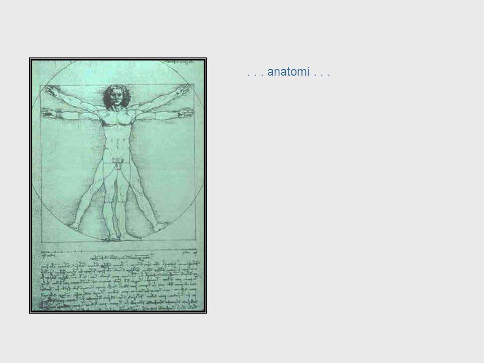 Da Vinci, cont. – Anatomy . . . anatomi . . . . . . anatomy . . .