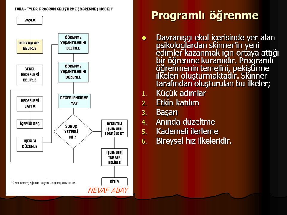 Programlı öğrenme