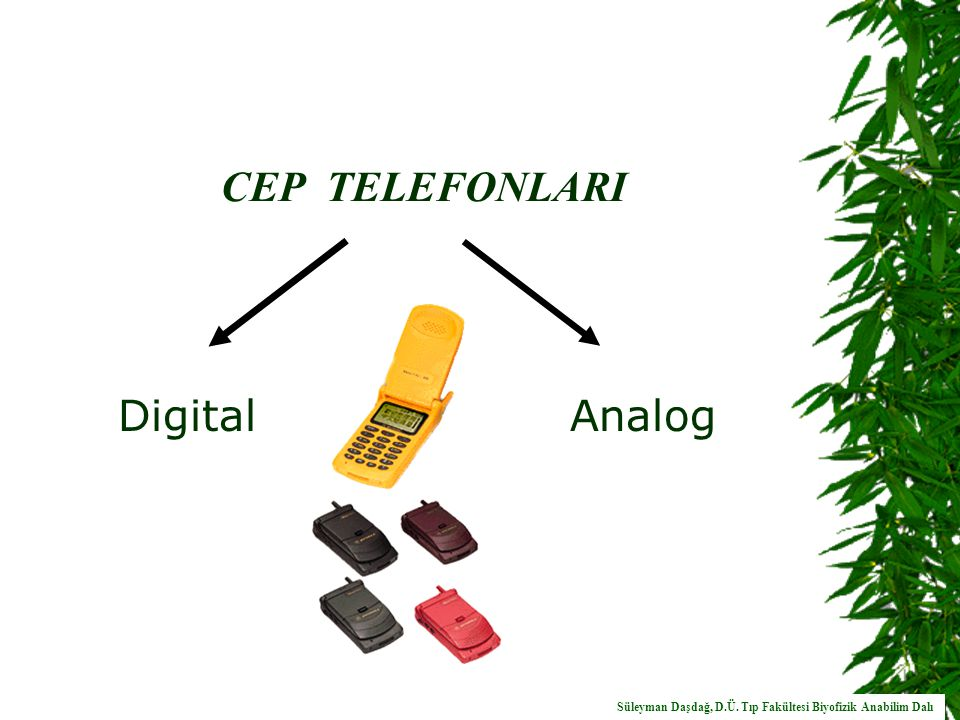 CEP TELEFONLARI Digital Analog