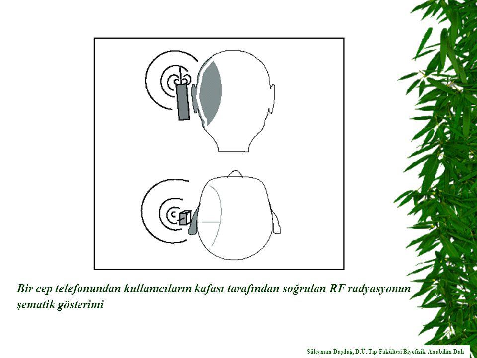 Bir cep telefonundan kullanıcıların kafası tarafından soğrulan RF radyasyonun şematik gösterimi
