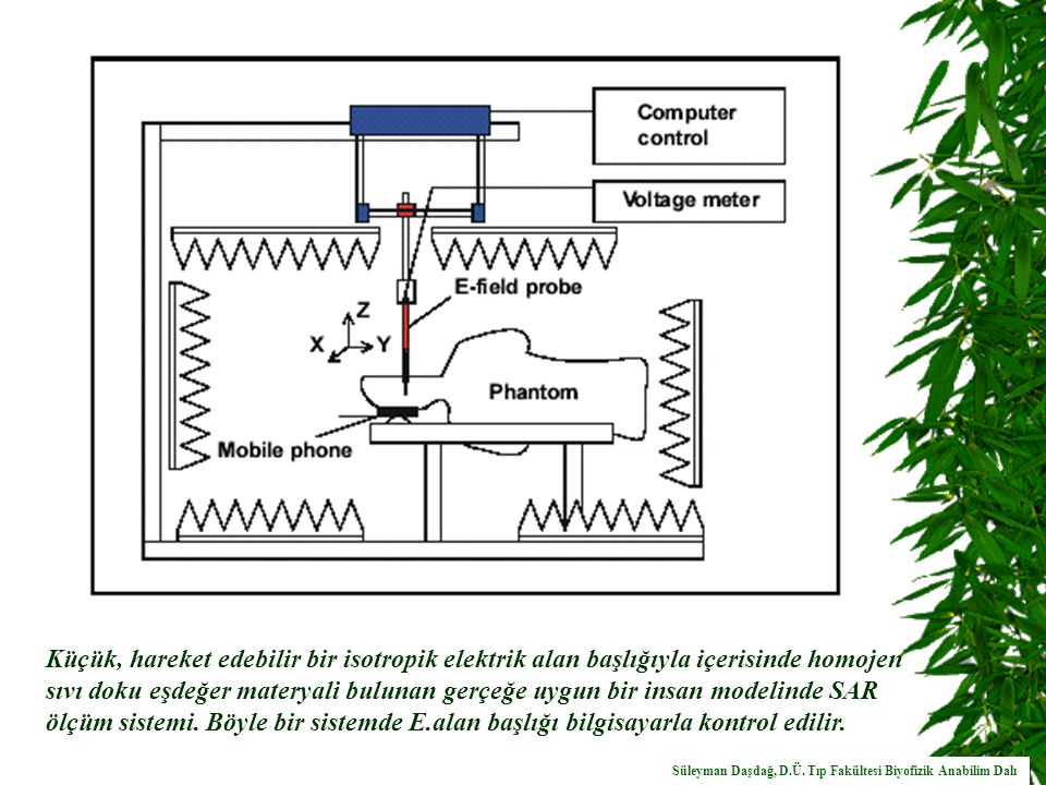 Küçük, hareket edebilir bir isotropik elektrik alan başlığıyla içerisinde homojen