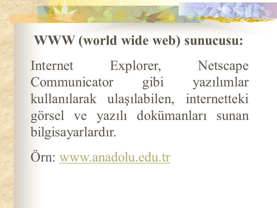 WWW (world wide web) sunucusu:
