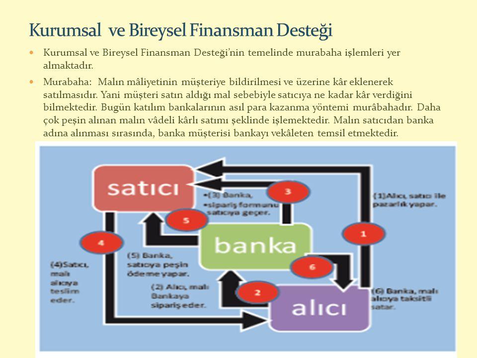 Kurumsal ve Bireysel Finansman Desteği