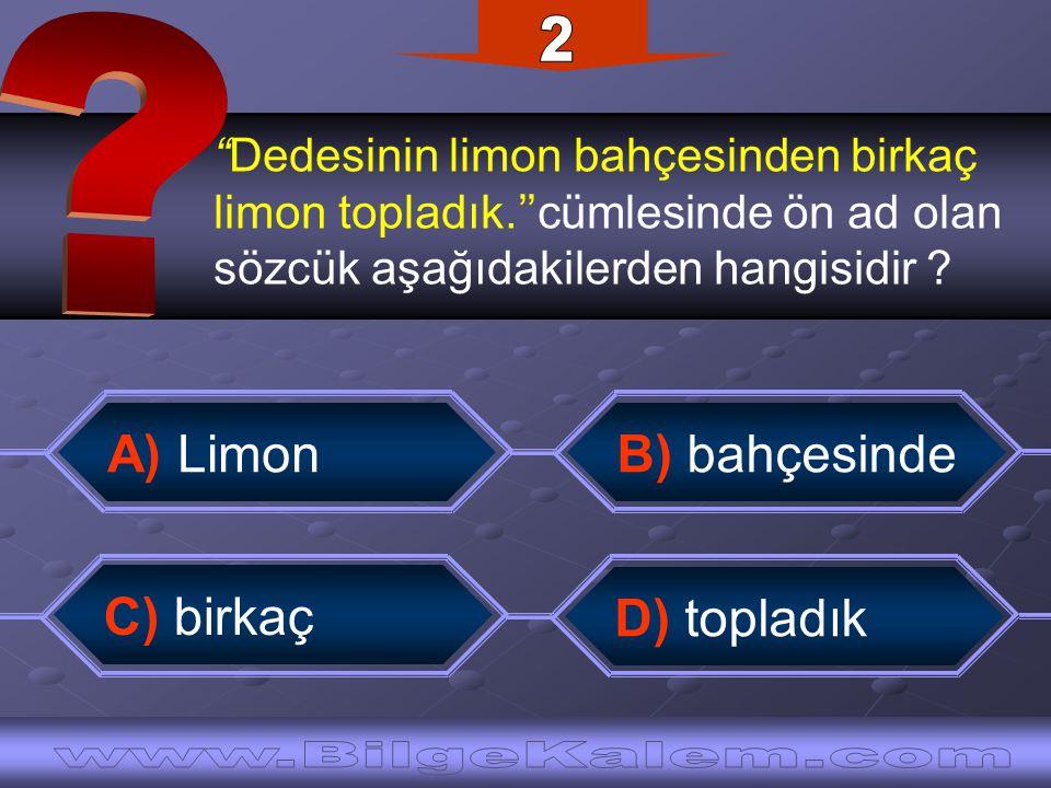 2 A) Limon B) bahçesinde C) birkaç