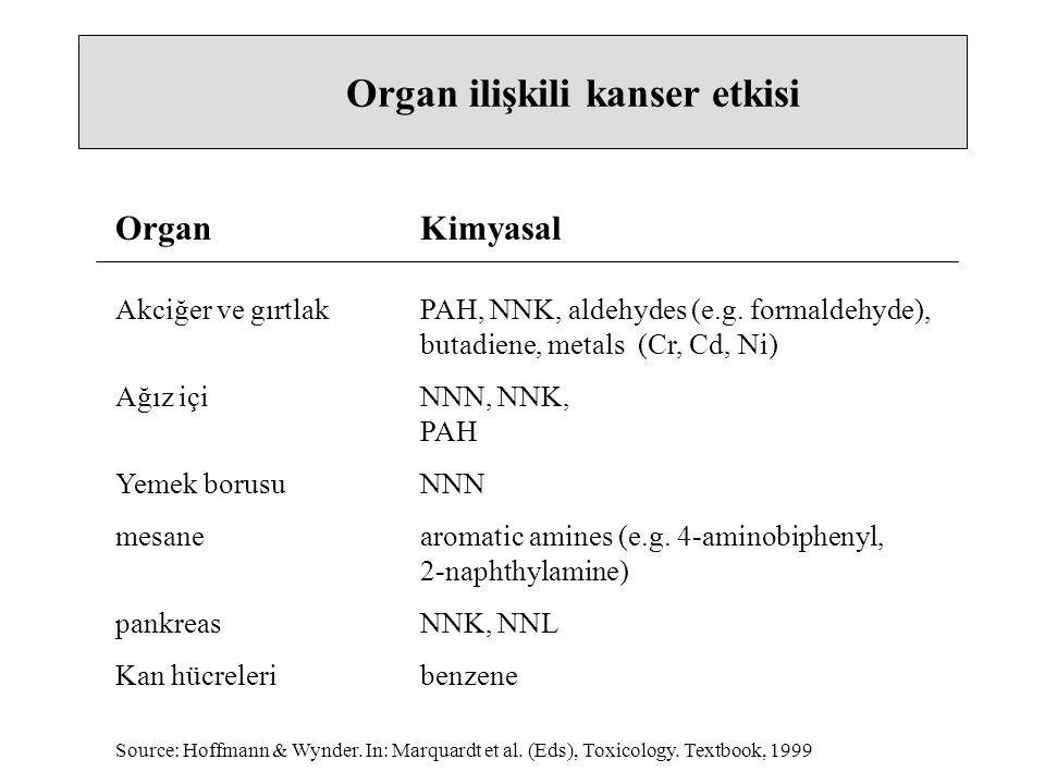 Organ ilişkili kanser etkisi