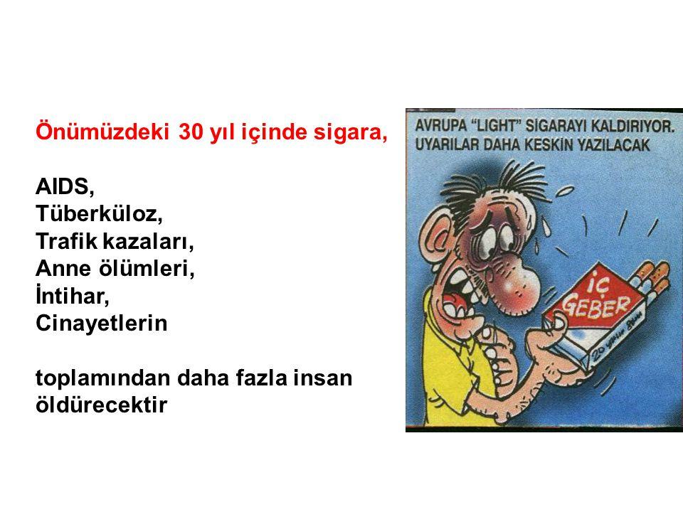 Önümüzdeki 30 yıl içinde sigara,
