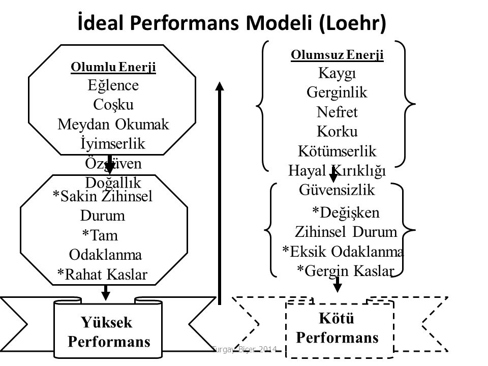 İdeal Performans Modeli (Loehr)