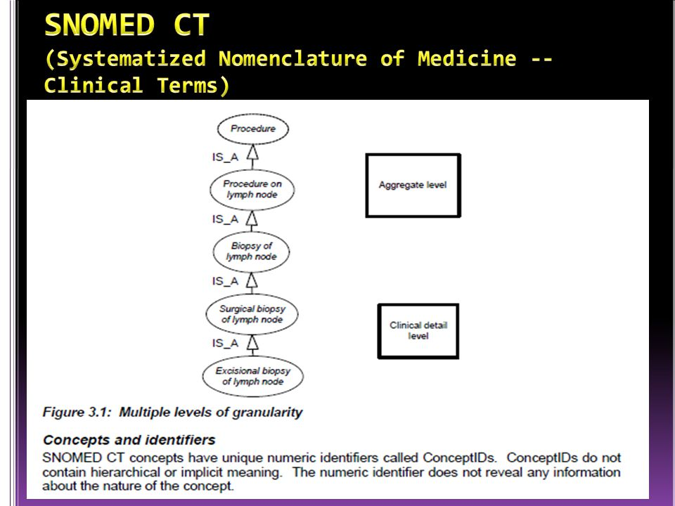 SNOMED CT (Systematized Nomenclature of Medicine -- Clinical Terms)