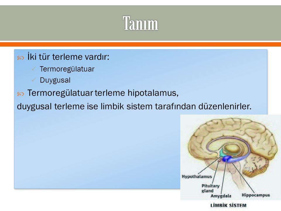 Tanım İki tür terleme vardır: Termoregülatuar terleme hipotalamus,