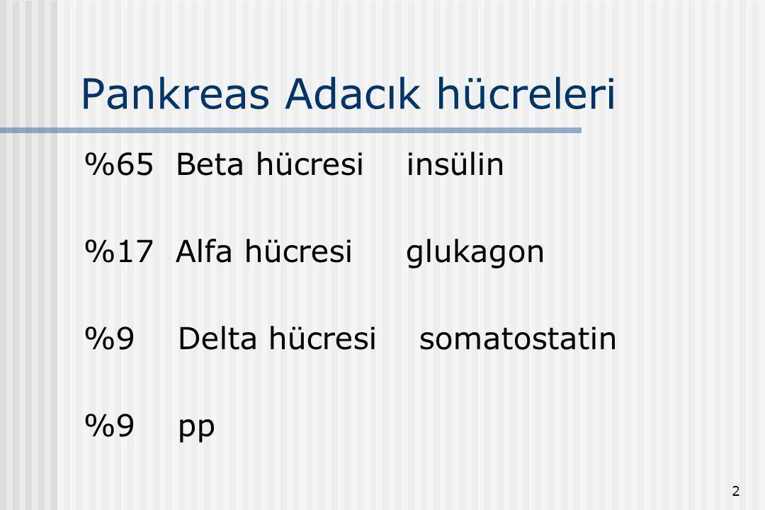 Pankreas Adacık hücreleri