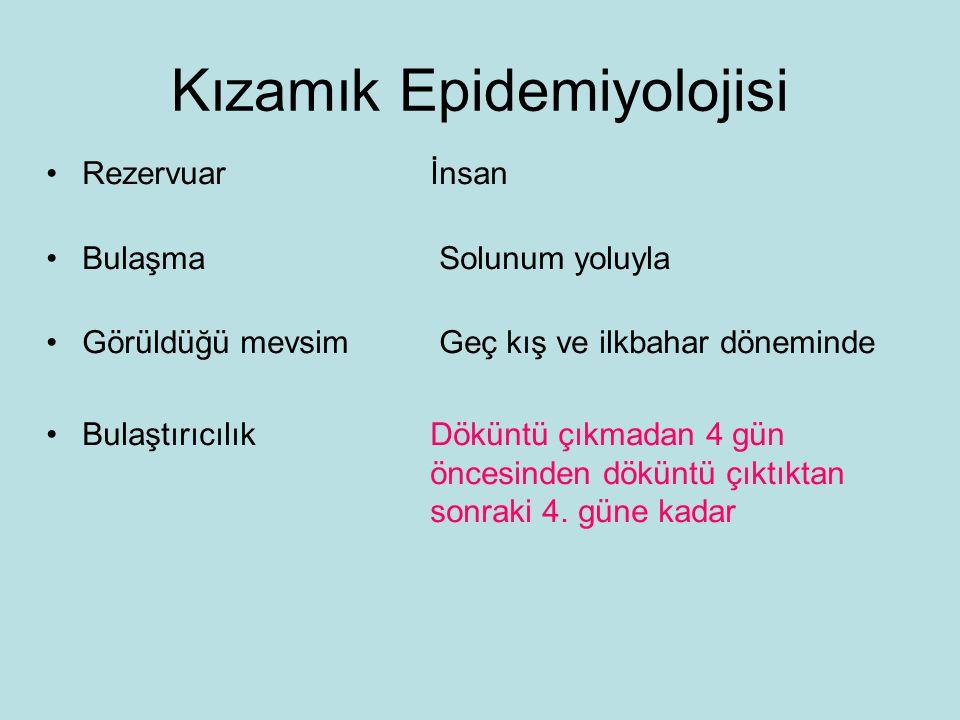 Kızamık Epidemiyolojisi