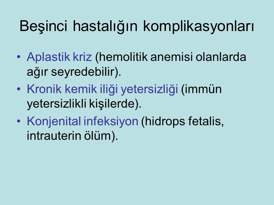 Beşinci hastalığın komplikasyonları