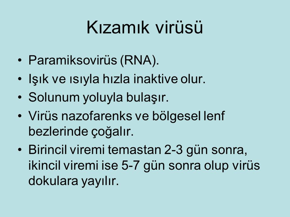 Kızamık virüsü Paramiksovirüs (RNA).