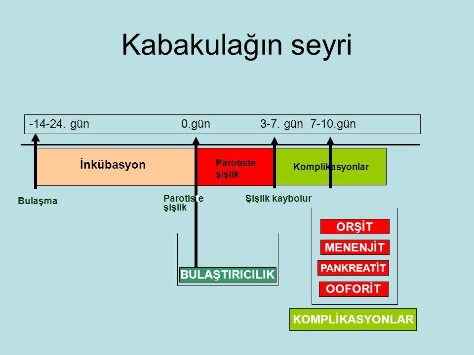 Kabakulağın seyri -14-24. gün 0.gün 3-7. gün 7-10.gün İnkübasyon ORŞİT