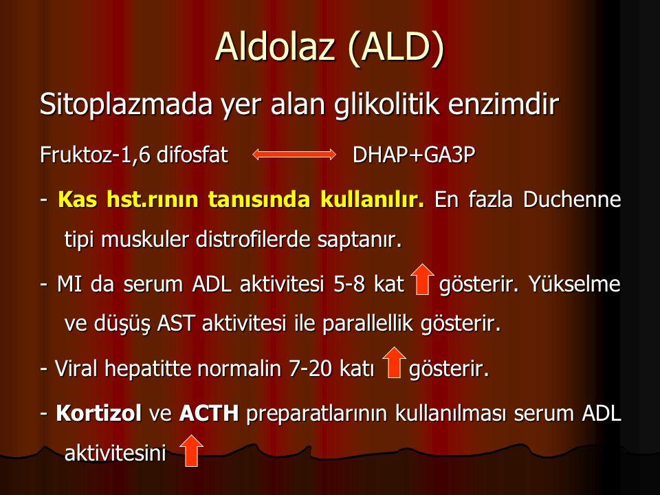 Aldolaz (ALD) Sitoplazmada yer alan glikolitik enzimdir