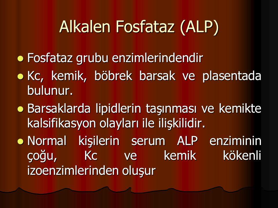 Alkalen Fosfataz (ALP)