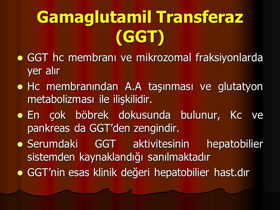 Gamaglutamil Transferaz (GGT)