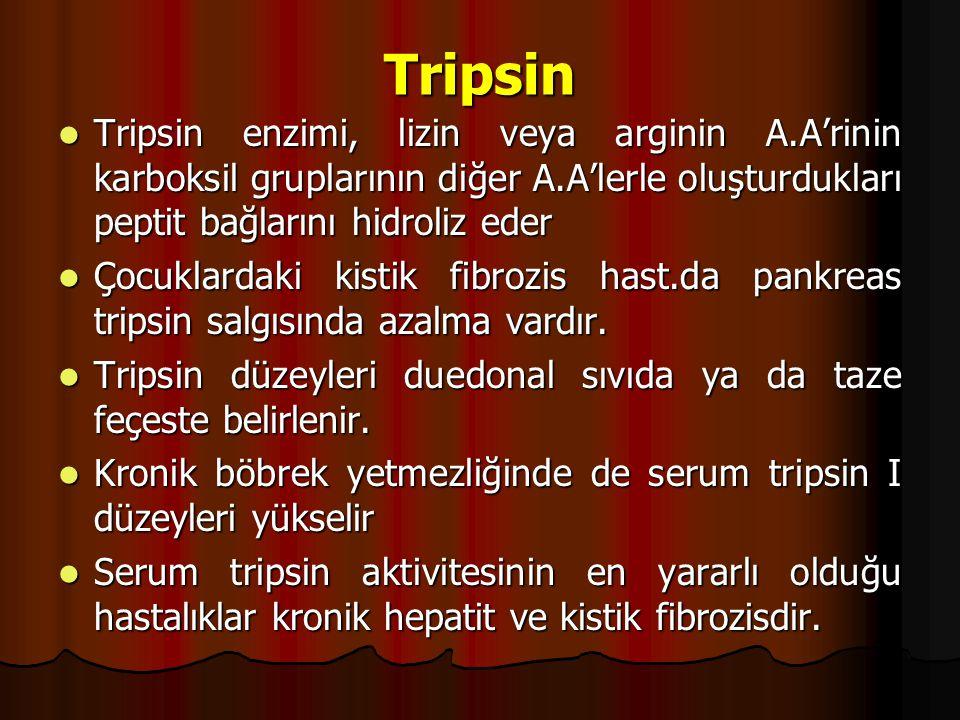 Tripsin Tripsin enzimi, lizin veya arginin A.A'rinin karboksil gruplarının diğer A.A'lerle oluşturdukları peptit bağlarını hidroliz eder.