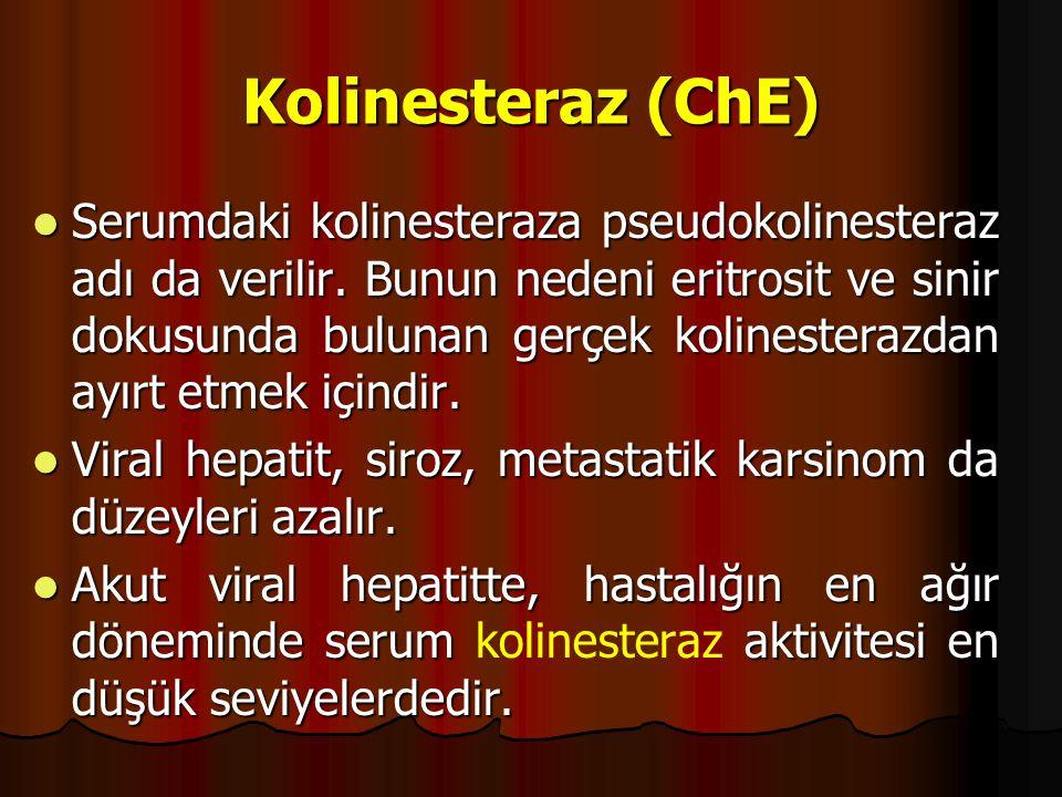 Kolinesteraz (ChE)