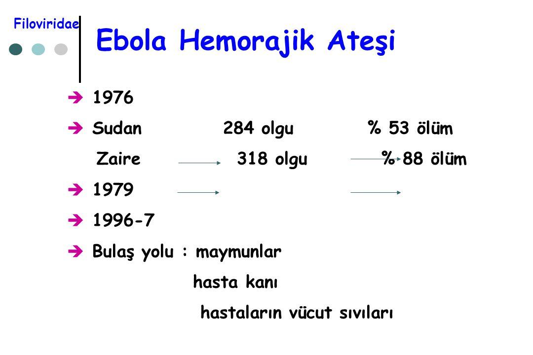 Ebola Hemorajik Ateşi 1976 Sudan 284 olgu % 53 ölüm
