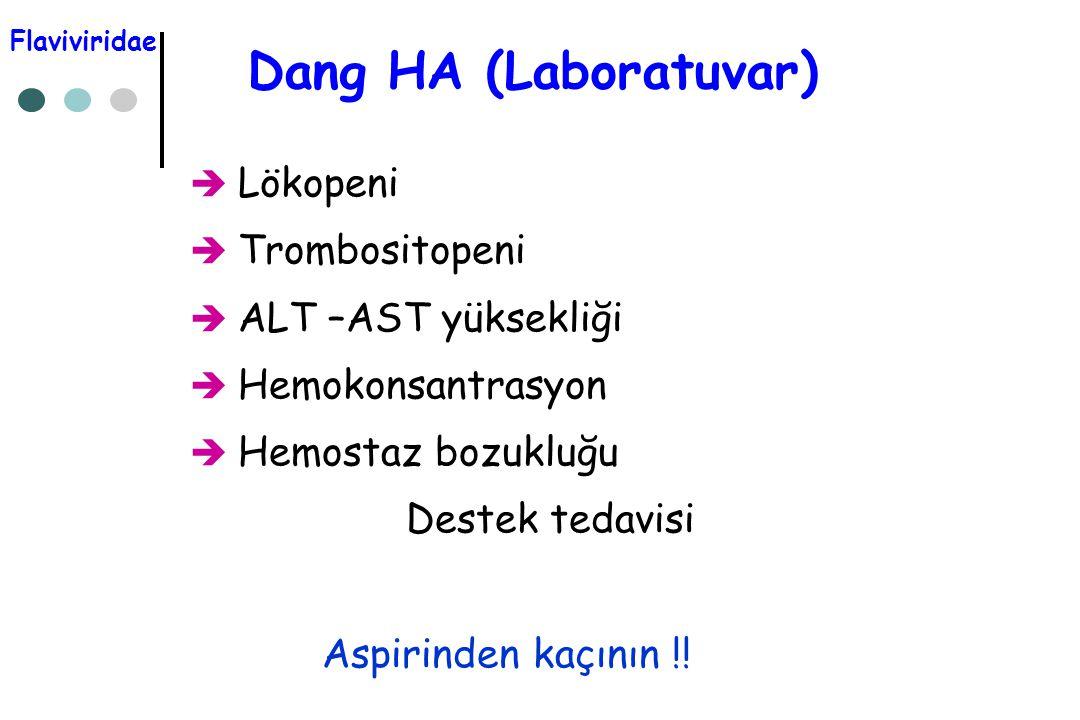 Dang HA (Laboratuvar) Lökopeni Trombositopeni ALT –AST yüksekliği