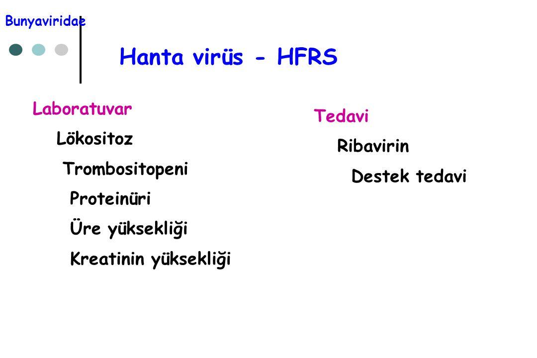 Hanta virüs - HFRS Laboratuvar Tedavi Lökositoz Ribavirin