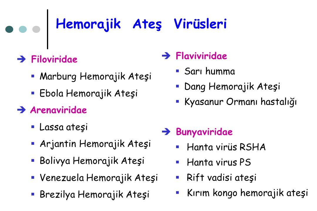 Hemorajik Ateş Virüsleri
