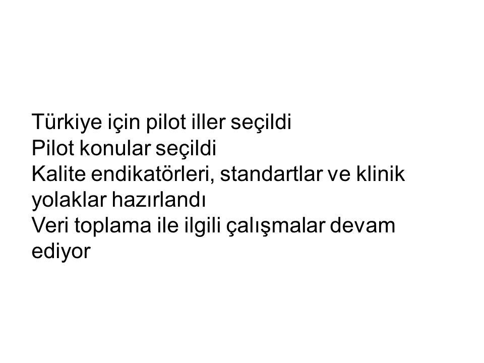 Türkiye için pilot iller seçildi