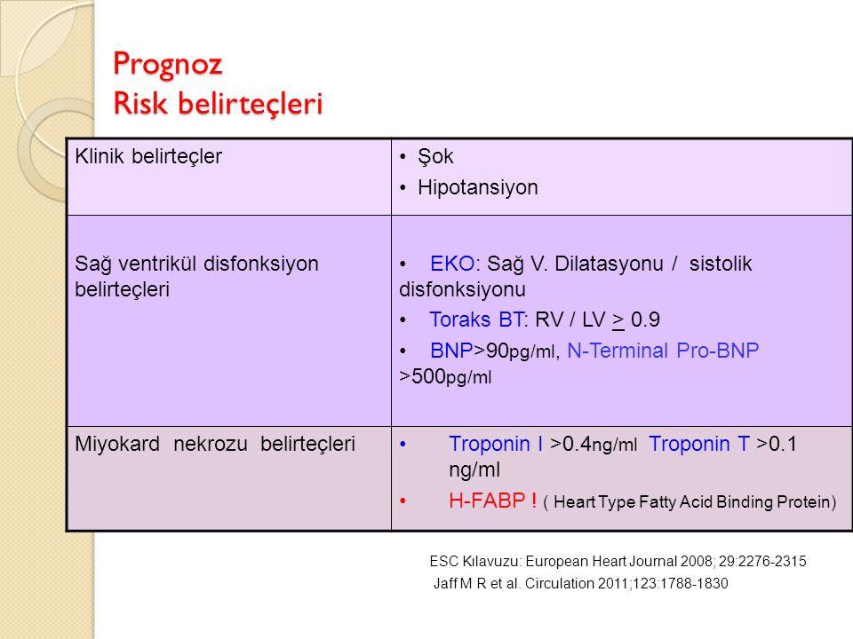 Prognoz Risk belirteçleri