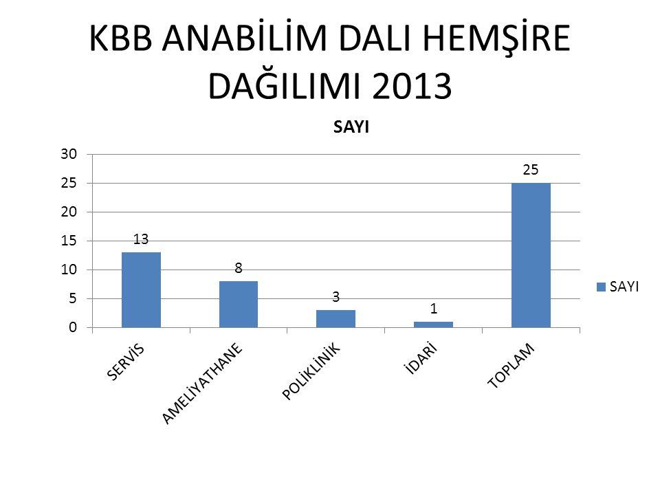 KBB ANABİLİM DALI HEMŞİRE DAĞILIMI 2013
