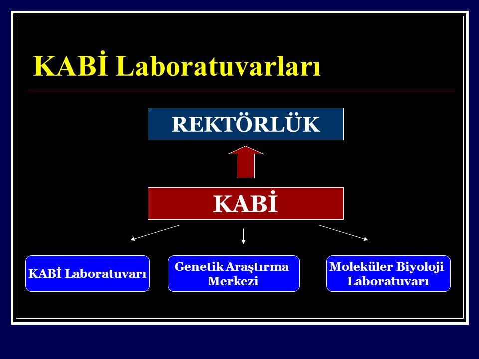 KABİ Laboratuvarları KABİ REKTÖRLÜK KABİ Laboratuvarı