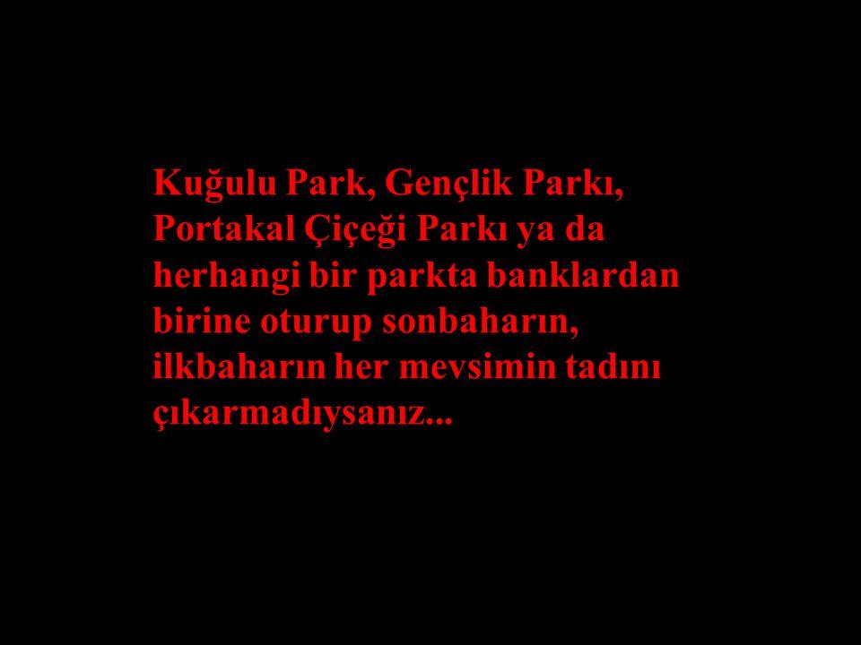 Kuğulu Park, Gençlik Parkı, Portakal Çiçeği Parkı ya da herhangi bir parkta banklardan birine oturup sonbaharın, ilkbaharın her mevsimin tadını çıkarmadıysanız...