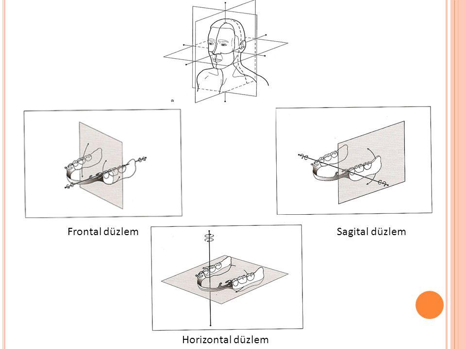 Frontal düzlem Sagital düzlem Horizontal düzlem