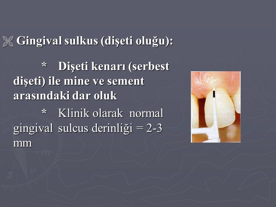 * Klinik olarak normal gingival sulcus derinliği = 2-3 mm